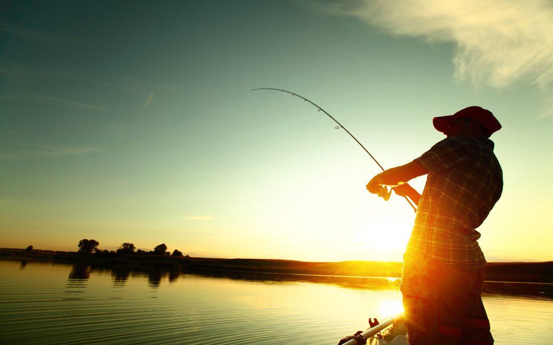 Tidbit Fishing In Memoir